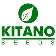 Бренд «Kitano»